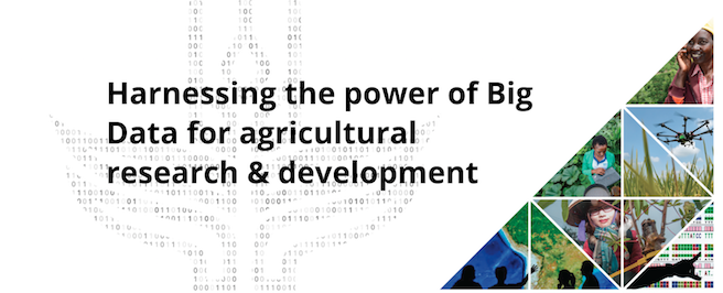 LD4D takes on CGIAR's Big Data in Agriculture Livestock Community of Practice
